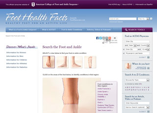 Foot Health Facts: Foot Diagram